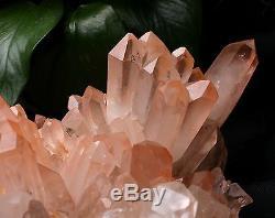 8.4lb A + Naturel Rare Belle Peau Rouge Quartz Cluster Crystal Tibetan Specimen