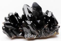 8.7ib Aaa +++ Rare Clair Naturel Beau Noir Quartz Cristal Cluster Spécimen