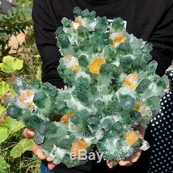 8.98lb Nouveau Trouver Vert Phantom Cristal De Quartz Grappe Minérale Des Échantillons De Guérison