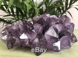 8 Grand Géode Améthyste Cristal Quartz Druze Spécimen Améthyste Cluster Chakra