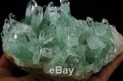 825g Aaa Rare Naturel Vert Ghost Pyramide Quartz Crystal Cluster Spécimen