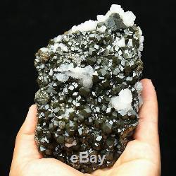 836g Naturel Andradite Grenat Cristal Quartz Cluster Mongolie Intérieure / Chine