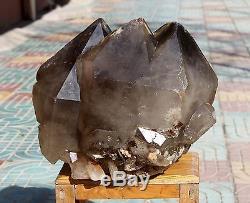 86.46lb Aaa +++ Naturel Elestial Squelettique Smoky Quartz Crystal Cluster Specimen