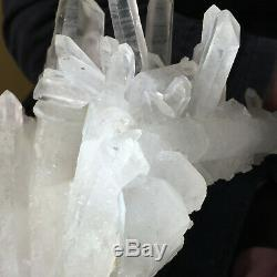 894g Grand Naturel Blanc Clair Quartz Cluster Rugueux De Guérison Des Échantillons