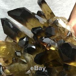 9.0lb Grand Quartz Fumé Noir Naturel Cristal Cluster Rugueux Guérison Des Échantillons