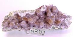 9,25 Amethyst Spirit Cactus Quartz Cluster Afrique Du Sud Q-243