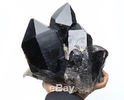 9.3lb Spécimen Minéral Rare De Grappe De Cristal De Quartz Noir Naturel De Beauté