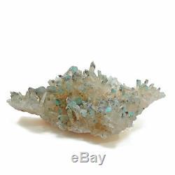 Ajoite In Quartz 7.0 Pouce 1.14 Lbs Cluster De Cristal Naturel Afrique Du Sud