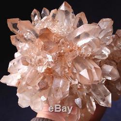 Ange Elestial Dragon Impressionnant Cluster Quartz Lémurien Rose Amour Abondant