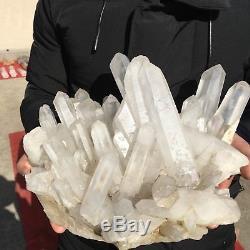Chrysanthème Blanc Naturel 18lb11clear Quartz Crystal Cluster Specimen Ab602