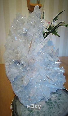 Clear Water Quartz Clear Crystal Crystal Points Cluster Formation Exquise 3.703kg