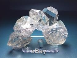 Complex Large Herkimer Diamond Quartz Crystal Cluster New York Ny W Enhydro