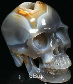 Crâne De Cristal Sculpté Par Agate De Grappe De 7,48, Super Réaliste, Guérison En Cristal