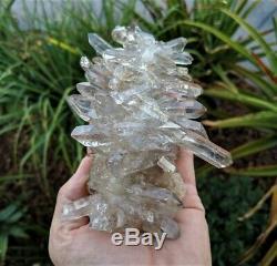 Cristal De L'himalaya Naturel, Grappe De Quartz Fumé Rare (140x100mm, 525g)
