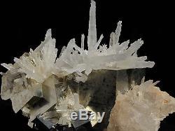 Cristaux De Pyrite Lumineux & Sceptre Quartz Cluster Minéral De Shangbao, Chine
