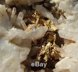 Cristaux De Quartz Quartz Quartz Cluster River Oregon 109 Gr