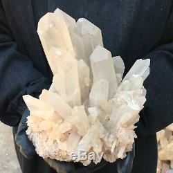 Echantillon De Cristal En Grappe De Quartz Clair Naturel 10.95lb Curatif Ot1062