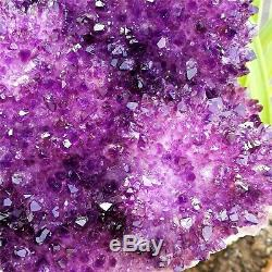Grande Skeletal Deep Purple Amethyst Quartz Cluster Spécimen Point 6.32lb