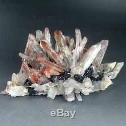 Grappe De Cristal De Quartz Rouge Rare De 1lbs Avec L'hématite, Chine-q1039