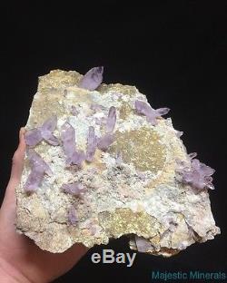 Haut Fin Enorme Clear Lavender Veracruz Amethyst Quartz Crystal Scepter Cluster