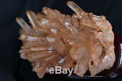 Haut! Spécimen Minéral En Grappes De Cristaux Naturel, Clair, 10.27 Lb + Support