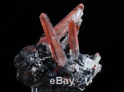 Hématite Noir Et Minéraux De Grappe De Quartz Rouge De 1,8 Lb De La Mine Jinlong, Chine