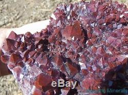 Huge High End Thunder Bay Amethyst Quartz Crystal Cluster Blue Points Mine