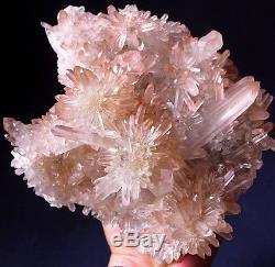 Impressionnant! Dragon Elestial Angel Rose Lémurien Quartz Cluster Crystal Point