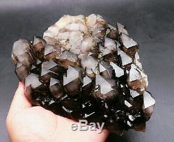 Skeletal Fumé Noir Cristal De Quartz Cluster Rare Clear Point Échantillon De Guérison