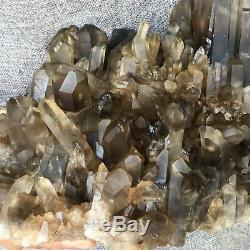 Spécimen De Cristal De Cluster De Quartz Citronné Enfumé Naturel 16.74lb Curatif E8335