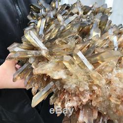 Spécimen De Cristal De Groupe De Quartz Citronné Fumés Naturel De 20.5lb Guérissant Ltd4