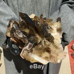 Spécimen De Cristal De Groupe De Quartz De Quartz Citrine Enfumé Naturel 5lb Guérissant Hot1331