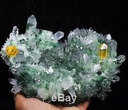 Spécimen De Grappe De Cristal De Quartz Fantôme Tibétain Fantôme Vert Magnifique De £ 4.58b