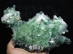 Spécimen De Grappe De Cristaux De Quartz Fantôme Fantôme Vert Tibétain Vert Magnifique Magnifique £ 3.17