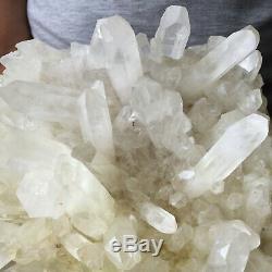 Spécimen De Guérison Approximatif De Groupe De Cristal Blanc De Quartz Blanc Clair De 5.9lb