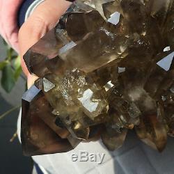 Spécimen De Guérison Approximatif De Groupe De Cristal De Quartz Fumé Clair Énorme De 16.3lb