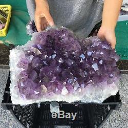 Spécimen En Cristal Minéral De Cluster De L'améthyste Naturel 33lb Guérissant Zx4434-6