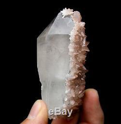 Spécimen Minéral De Grappe De Cristal Enveloppé Dans De La Calcite Rose Rare, 124.6g / Chine