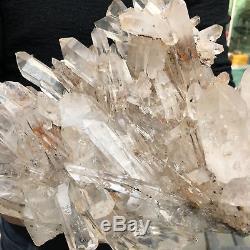 Spécimen Minéral En Cristal Clair De 13lb Cluster Cluster Quartz 11.4 Tt503