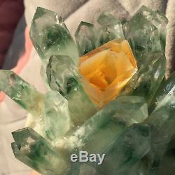 Spécimen Minéral En Grappe De Cristal De Quartz De Fantôme Vert De 1.3lb Découvrant La Guérison121