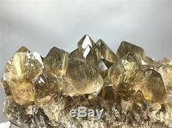 Spécimen Point En Pinces De Cristal 1185g Naturel Clair Doré Rutile Doré