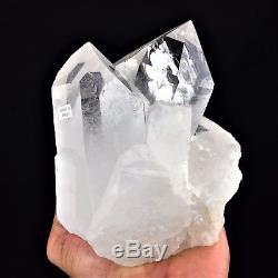 Spécimique Cluster De Cristal De Quartz Transparent Naturel 2,7 Lb Grande Pierre Du Brésil