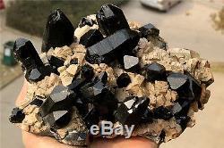 W1630g Naturel Noir Quartz Cristal Cluster Point Feldspath Intergrowth Specimen